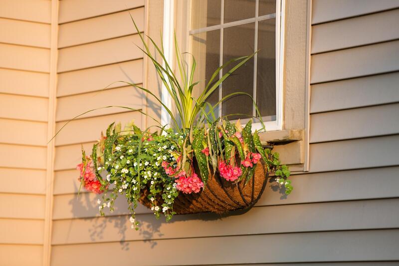 Window Decoration Fairfax VA
